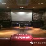 阳江十八子世界发烧音响博物馆17号房的一间22.4声道的家庭影院